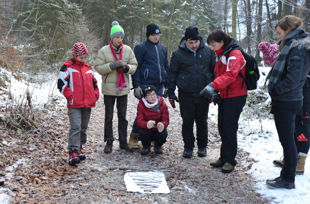 Obisk gozda v zimskem času